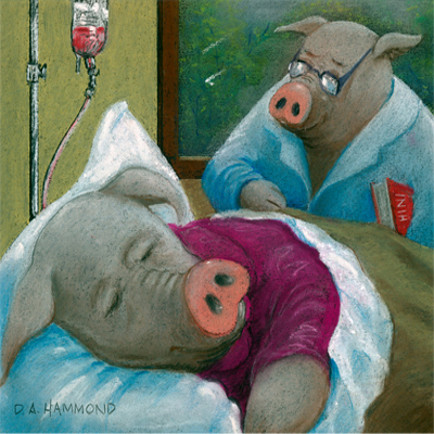 HOGSPITAL, wHERE hAM iS cURED